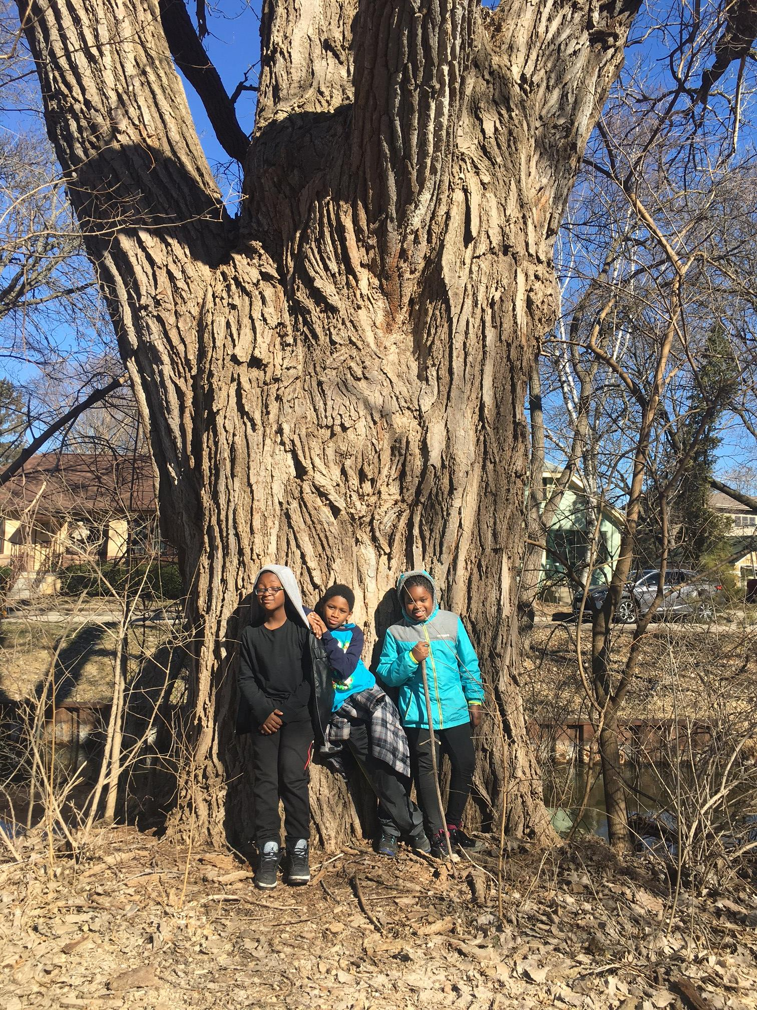 This tree has many stories, which these kids can tell you about!